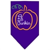 Mirage Pet Products Lil Punkin Screen Print Bandana Purple Small