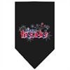 Mirage Pet Products Little Firecracker Screen Print Bandana Black Large