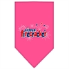 Mirage Pet Products Little Firecracker Screen Print Bandana Bright Pink Small