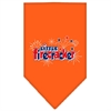 Mirage Pet Products Little Firecracker Screen Print Bandana Orange Large