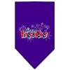 Mirage Pet Products Little Firecracker Screen Print Bandana Purple Large