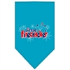 Mirage Pet Products Little Firecracker Screen Print Bandana Turquoise Large