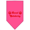 Mirage Pet Products Local Celebrity Screen Print Bandana Bright Pink Small