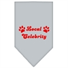Mirage Pet Products Local Celebrity Screen Print Bandana Grey Large