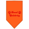 Mirage Pet Products Local Celebrity Screen Print Bandana Orange Small