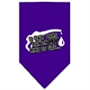 Mirage Pet Products My Kind Of Gas Screen Print Bandana Purple Small