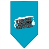 Mirage Pet Products My Kind Of Gas Screen Print Bandana Turquoise Small