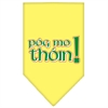 Mirage Pet Products Pog Mo Thoin Screen Print Bandana Yellow Large