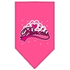 Mirage Pet Products I'm a Princess Screen Print Bandana Bright Pink Large