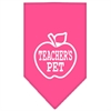 Mirage Pet Products Teachers Pet Screen Print Bandana Bright Pink Small