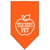Mirage Pet Products Teachers Pet Screen Print Bandana Orange Small