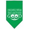 Mirage Pet Products Up to No Good Screen Print Bandana Emerald Green Large