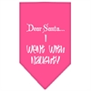Mirage Pet Products Went with Naughty Screen Print Bandana Bright Pink Large