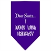 Mirage Pet Products Went with Naughty Screen Print Bandana Purple Large
