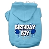 Mirage Pet Products Birthday Boy Screen Print Pet Hoodies Baby Blue Size Sm (10)