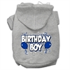 Mirage Pet Products Birthday Boy Screen Print Pet Hoodies Grey Size XL (16)