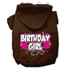 Mirage Pet Products Birthday Girl Screen Print Pet Hoodies Brown Size Sm (10)