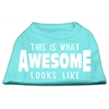 Mirage Pet Products This is What Awesome Looks Like Dog Shirt Aqua XS (8)