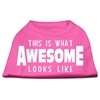 Mirage Pet Products This is What Awesome Looks Like Dog Shirt Bright Pink XXL (18)