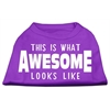 Mirage Pet Products This is What Awesome Looks Like Dog Shirt Purple XS (8)