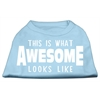 Mirage Pet Products This is What Awesome Looks Like Dog Shirt Baby Blue Sm (10)