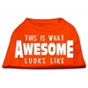Mirage Pet Products This is What Awesome Looks Like Dog Shirt Orange Med (12)