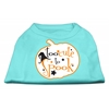 Mirage Pet Products Too Cute to Spook Screen Print Dog Shirt Aqua Sm (10)