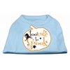 Mirage Pet Products Too Cute to Spook Screen Print Dog Shirt Baby Blue XS (8)