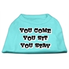 Mirage Pet Products You Come, You Sit, You Stay Screen Print Shirts Aqua S (10)