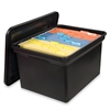 "File N Store Portable Bin with Lid - External Dimensions: 17.9"" Width x 14.1"" Depth x 10.8""Height - Media Size Supported: Letter - Snap-tight Closure - Black - For File - 1 Each"