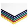 "Fome-Cor Foam Board - 20"" x 30"" - 10 / Carton - Assorted - Polystyrene"