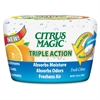 Triple Action - 12.80 oz - Fresh Citrus - 1 Each