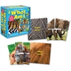 Carson-Dellosa What Am I? Board Game - Educational4 Players