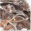 ChenilleKraft Natural Feathers - 1 Pack - Natural