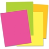 "Pacon Matte Neon Foam Boards - 30"" x 20"" - 12 / Carton - Hot Pink, Hot Lemon, Hot Lime, Hot Orange"
