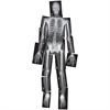 Roylco Human X-Ray - Theme/Subject: Radiology - Skill Learning: Radiography - 18 Pieces - 5+