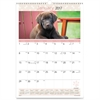 At-A-Glance Puppy Images Wall Calendar - Daily, Monthly - 1 Year - January till December - 1 Month Single Page Layout - Wire Bound - Wall Mountable - Assorted - Chipboard - Reference Calendar, Hanging