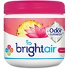 Bright Air Super Odor Eliminator Air Freshener - 14 fl oz (0.4 quart) - Island Nectar, Pineapple - 60 Day - 6 / Carton