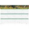 "House of Doolittle Earthscapes Laminated Wall Planners - Julian - Monthly - 1 Year - January 2017 till December 2017 - 24"" x 37"" - Wall Mountable - Assorted - Paper - Laminated, Erasable, Write on/Wip"