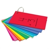 """Hygloss Bright Study Buddies Flash Cards - 100 Sheets - Ring - 3"""" x 5"""" - Assorted Paper - 100 / Pack"""
