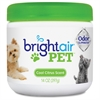 Bright Air Pet Odor Eliminator Air Freshener - 14 fl oz (0.4 quart) - Cool Fresh - 60 Day - 6 / Carton - Odor Neutralizer