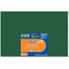 "Elmer's Chalk Foam Boards - 30"" (2.5 ft) Width x 20"" (1.7 ft) Height - Green Foam Board Surface - Rectangle - 2 / Pack"