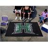FANMATS Hawaii Ulti-Mat 5'x8'
