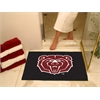 "FANMATS Missouri State All-Star Mat 33.75""x42.5"""
