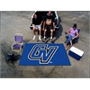 FANMATS Grand Valley State Ultimat 5'x8'