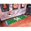 FANMATS Kentucky Putting Green Mat