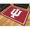 FANMATS Indiana 8'x10' Rug