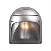 PLC 1 Light Outdoor Fixture Delphi Collection , Silver
