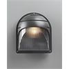 PLC 1 Light Outdoor Fixture Delphi Collection , Bronze