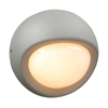 PLC 1 Light Outdoor Fixture Sol Collection , Silver